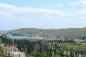 Rastoni Apartments_best deals_Apartment_Cyclades Islands_Andros_Andros City