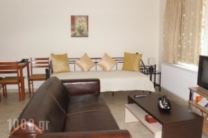 Rastoni Apartments_lowest prices_in_Apartment_Cyclades Islands_Andros_Andros City
