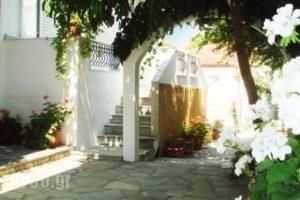 Loginos Studios_accommodation_in_Hotel_Macedonia_Halkidiki_Kassandreia