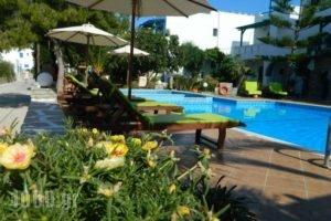 Ioanna Apartments_accommodation_in_Apartment_Cyclades Islands_Naxos_Naxos chora