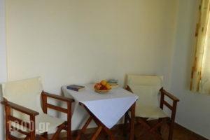 Ioanna Apartments_best deals_Apartment_Cyclades Islands_Naxos_Naxos chora