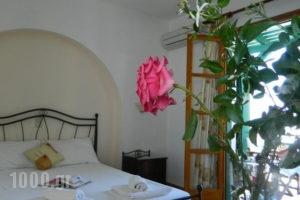 Ioanna Apartments_holidays_in_Apartment_Cyclades Islands_Naxos_Naxos chora