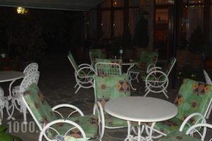 Zozas Rooms_holidays_in_Room_Thessaly_Trikala_Kalambaki