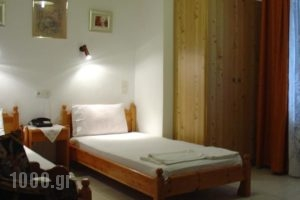 Zozas Rooms_lowest prices_in_Room_Thessaly_Trikala_Kalambaki