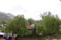 Sakis Pension in Ioannina City, Ioannina, Epirus
