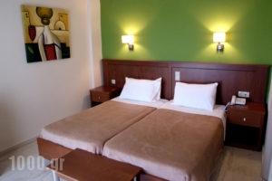 Elina_best deals_Hotel_Epirus_Thesprotia_Perdika