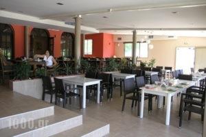 Elina_lowest prices_in_Hotel_Epirus_Thesprotia_Perdika