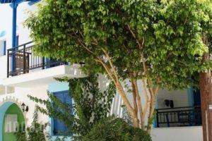 Katerina Roza Studios_accommodation_in_Hotel_Cyclades Islands_Naxos_Naxos chora