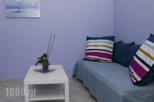 9 Muses_best prices_in_Hotel_Piraeus Islands - Trizonia_Kithira_Agia Pelagia