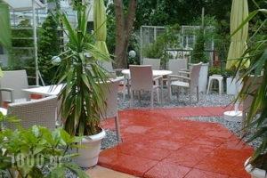 Lito_holidays_in_Hotel_Macedonia_Pieria_Paralia Katerinis