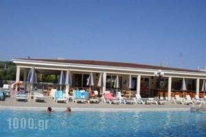 Planos Apart_best deals_Apartment_Ionian Islands_Zakinthos_Planos