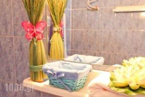 Smaragdi_lowest prices_in_Hotel_Crete_Chania_Chania City