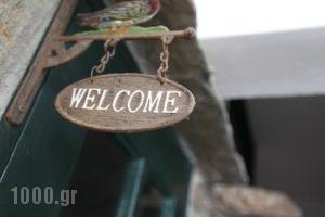 Voreades_lowest prices_in_Hotel_Cyclades Islands_Tinos_Tinosora
