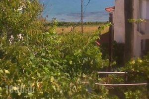 Velendzas Holidays_accommodation_in_Hotel_Ionian Islands_Zakinthos_Zakinthos Rest Areas