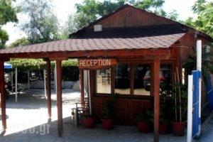 Alikes_best deals_Room_Macedonia_Halkidiki_Chalkidiki Area