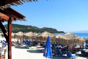 Alikes_best prices_in_Room_Macedonia_Halkidiki_Chalkidiki Area
