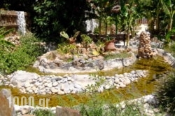 Stone Village Hotel Apartments in Mylopotamos, Rethymnon, Crete