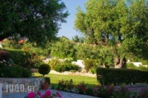 Aphrodite Studios_best prices_in_Hotel_Macedonia_Halkidiki_Kassandreia