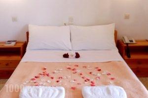 Studios Maria_best prices_in_Hotel_Peloponesse_Arcadia_Astros