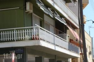 Hellas_holidays_in_Hotel_Thraki_Rodopi_Komotini City