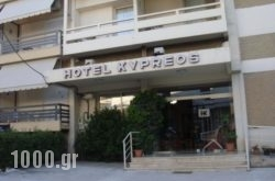 Kypreos in  Kamena Vourla , Fthiotida, Central Greece