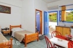 Vasilakis Studios & Apartments in Malia, Heraklion, Crete