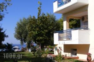 Villa Asterianna_accommodation_in_Villa_Macedonia_Halkidiki_Poligyros