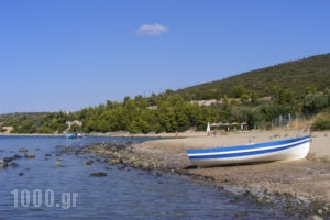 Villa Asterianna_travel_packages_in_Macedonia_Halkidiki_Poligyros