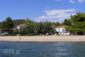 Villa Asterianna_holidays_in_Villa_Macedonia_Halkidiki_Poligyros