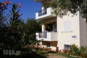 Villa Asterianna_best prices_in_Villa_Macedonia_Halkidiki_Poligyros