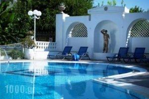 Ninettas Studios_lowest prices_in_Apartment_Piraeus Islands - Trizonia_Poros_Poros Rest Areas