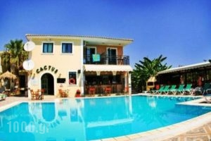 Cactus_best prices_in_Apartment_Ionian Islands_Zakinthos_Laganas