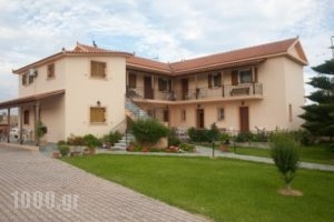 Lefki Studios_best prices_in_Hotel_Ionian Islands_Kefalonia_Kefalonia'st Areas