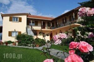 Lefki Studios_accommodation_in_Hotel_Ionian Islands_Kefalonia_Kefalonia'st Areas