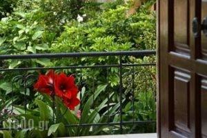 Lefki Studios_holidays_in_Hotel_Ionian Islands_Kefalonia_Kefalonia'st Areas