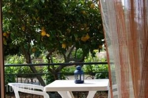 Lefki Studios_best deals_Hotel_Ionian Islands_Kefalonia_Kefalonia'st Areas
