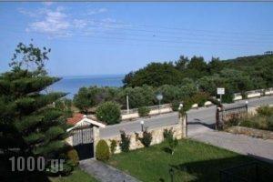 Lefki Studios_travel_packages_in_Ionian Islands_Kefalonia_Kefalonia'st Areas
