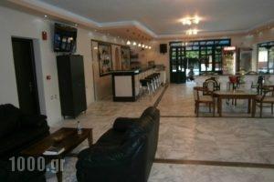 Portego_holidays_in_Apartment_Ionian Islands_Zakinthos_Mouzaki