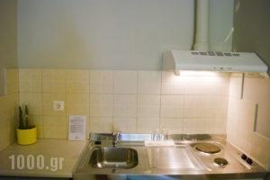 Anemoni_best deals_Hotel_Central Greece_Evia_Edipsos
