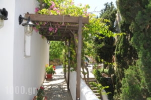 Aphrodite Pension_best prices_in_Room_Crete_Rethymnon_Plakias