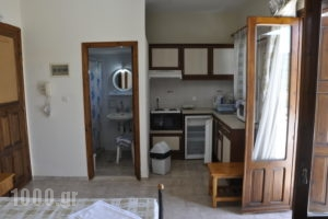 Vasiliki Apartments_travel_packages_in_Aegean Islands_Chios_Chios Rest Areas