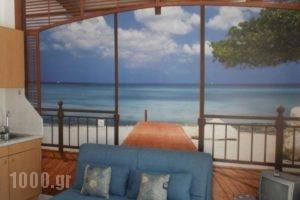 Limani Apartments_lowest prices_in_Apartment_Crete_Rethymnon_Plakias