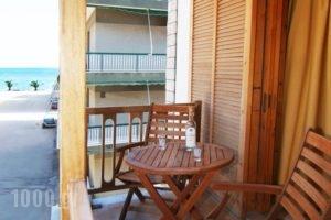 Studios Maria_holidays_in_Hotel_Peloponesse_Arcadia_Astros