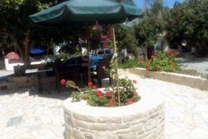 Villa Sylvia_best prices_in_Villa_Crete_Heraklion_Matala