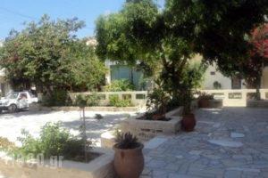 Villa Sylvia_lowest prices_in_Villa_Crete_Heraklion_Matala