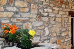 Neorion_best prices_in_Hotel_Aegean Islands_Thasos_Limenaria