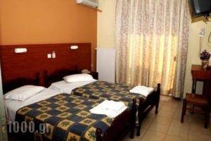 Villa Theodora_accommodation_in_Villa_Thraki_Rodopi_Komotini City
