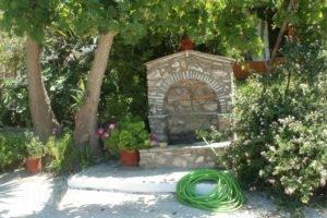 Studios Dimitris_holidays_in_Hotel_Sporades Islands_Skiathos_Skiathoshora