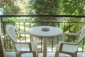 Studios Dimitris_best prices_in_Hotel_Sporades Islands_Skiathos_Skiathoshora