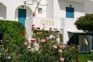 Keti Kapri_lowest prices_in_Hotel_Cyclades Islands_Naxos_Agia Anna